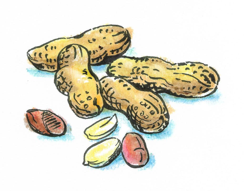 Пищевая аллергия и возможности иммунотерапии.